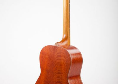 One of Glenn's custom made, handcrafted acoustic guitars