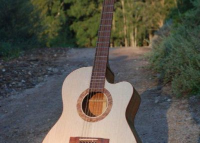 Custom made Southern Belle cutaway acoustic