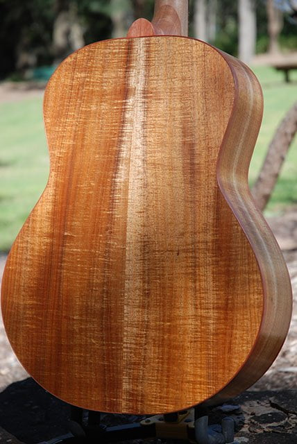 Stunning Australian Fiddleback Blackwood